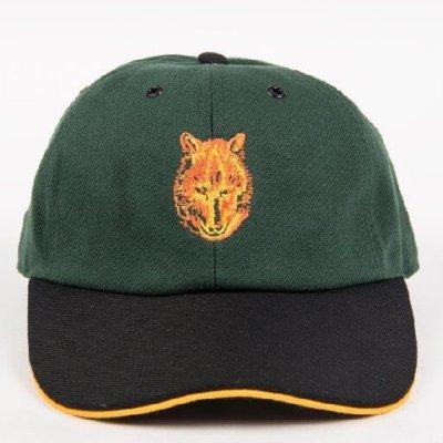 2 tone Cub Cap